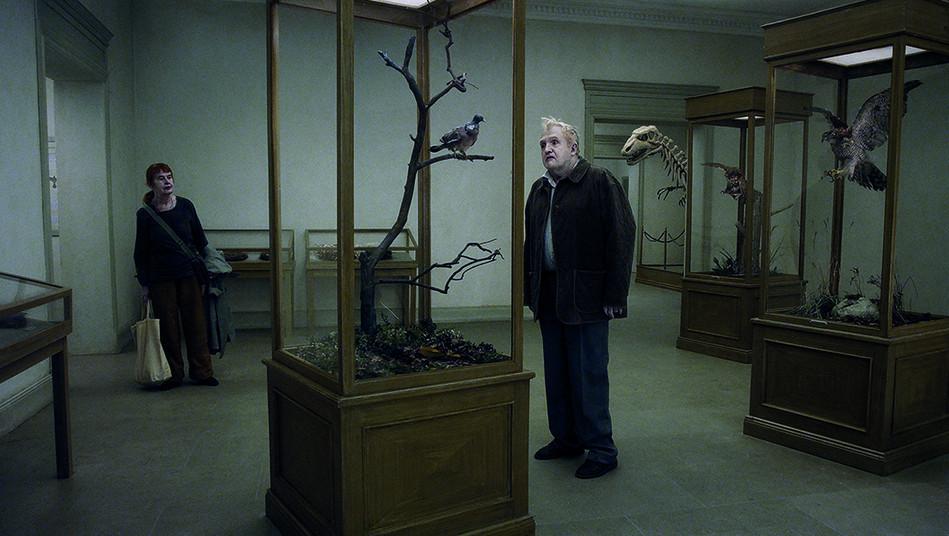 """La paloma disecada de """"Una paloma se posó en una rama a reflexionar sobre la existencia""""."""
